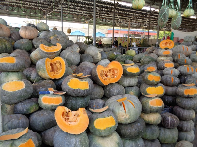 Large_pumpkins